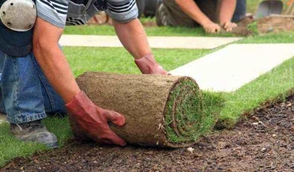 Разворачиваем рулонный газон
