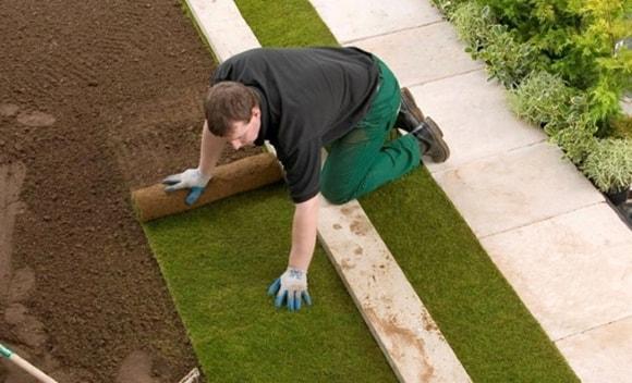 Ровно укладываем рулонный газон