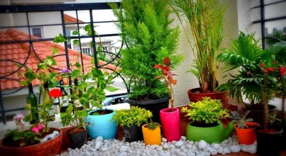 Варианты декорирования балкона цветами